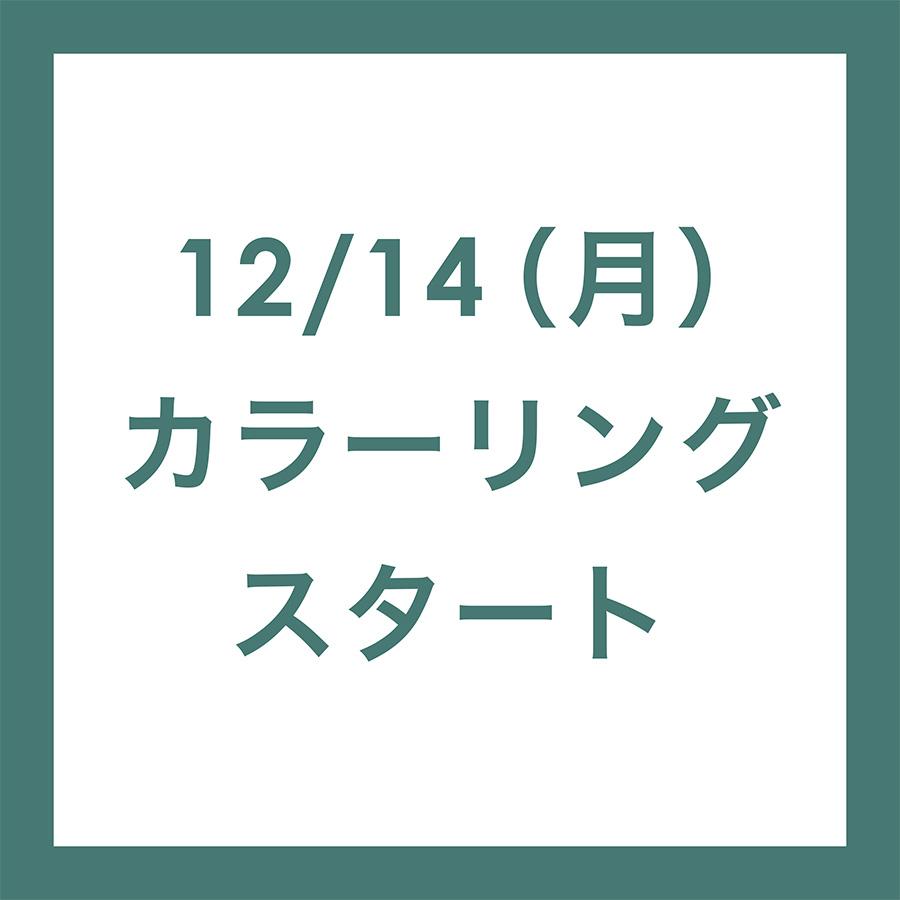 12/14(月)カラーリングメニュースタート!